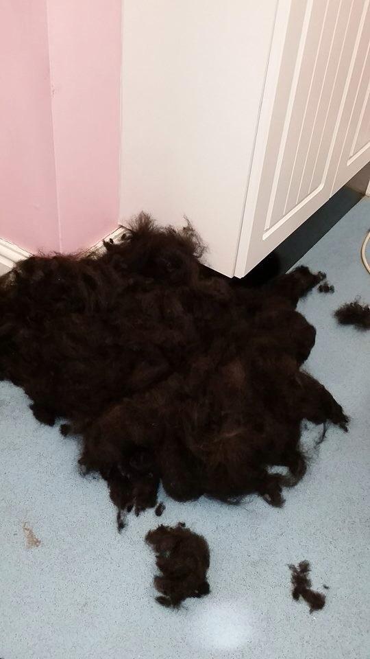 Charlie hair